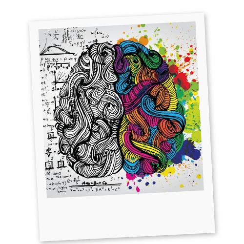 мозг дизайнера